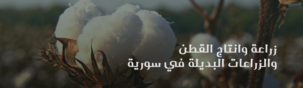 بيان صحفي صادر عن مجموعة عمل اقتصاد سوريا - زراعة القطن والزراعات البديلة في سوريا