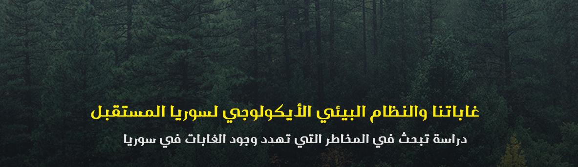 الغابات السورية , اقتصاد سوريا